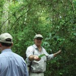 Dr. Hansen points out an Allspice tree