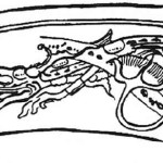 Crocodile-like depictions appear in Mayan myth and artifacts.