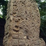 Stela in the Yaxhá archaeological site. (photo by Thor Janson)