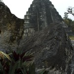 The Many Faces of Tikal by Byron Ortiz