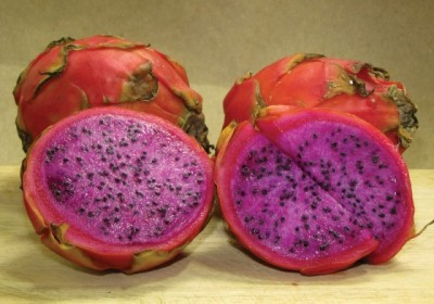 Pitaya season is here (photo by Rudy Girón)