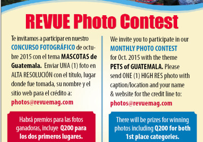 Photo-Contest-Pets-AD